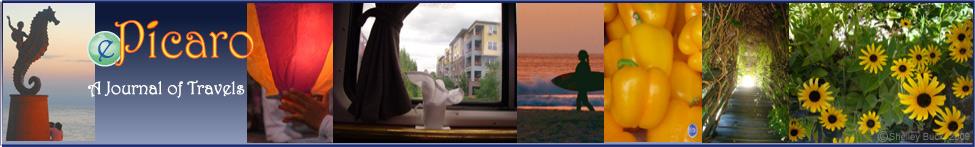 ePicaro.com header image 2